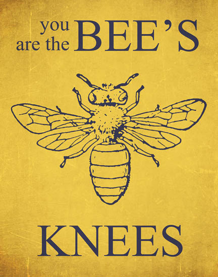 you-are-the-bees-knees.jpg