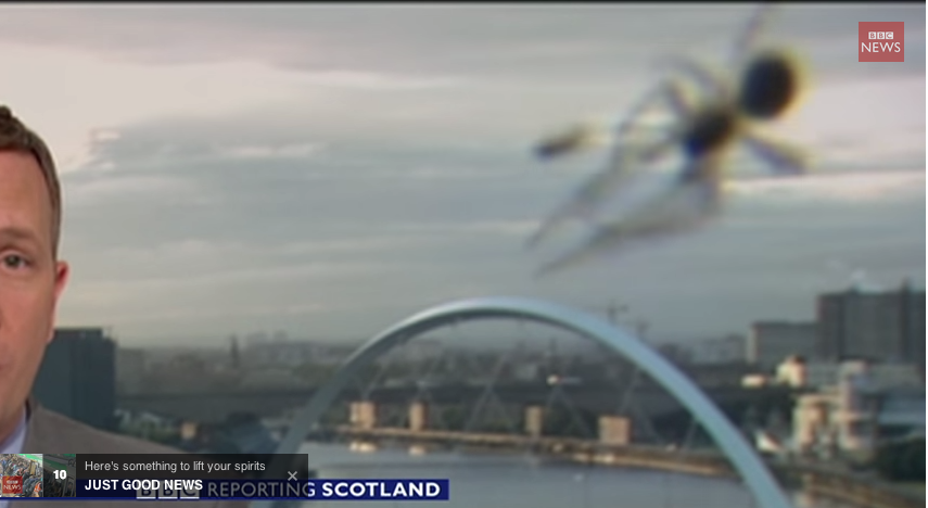 Video: Spider Photobombs BBC Newscast or Giant Alien Spiders Begin Invasion of Britain